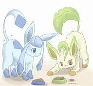GlaceonXLeafeon