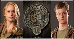 District 1- Luxury District