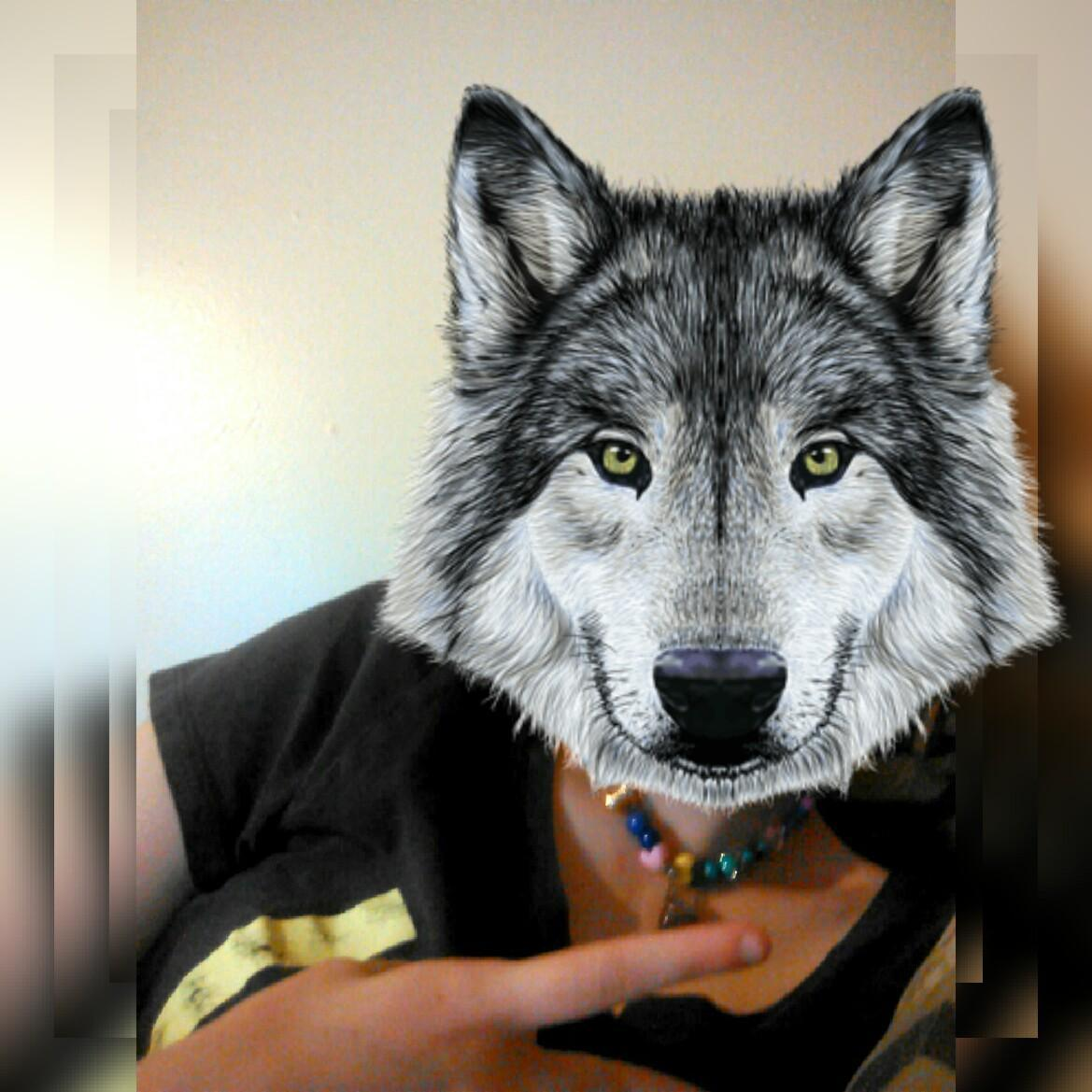 Me with a wolf head