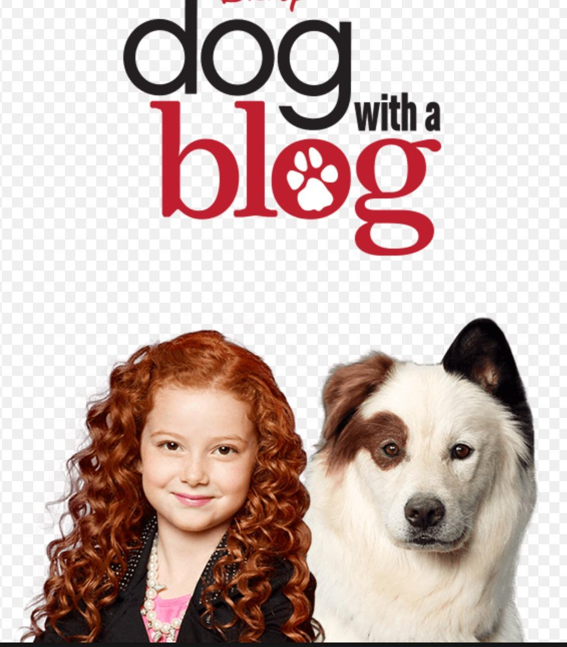 Dog with a blog (me: WHY :(()