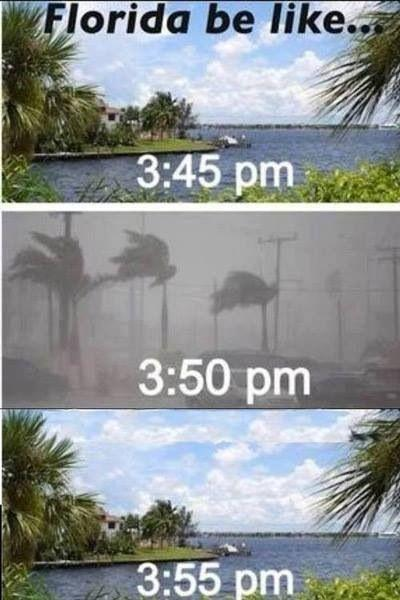 Florida weather, average temp: 82 degrees warm in winter, hot and humid in summer with lots of thunderstorms