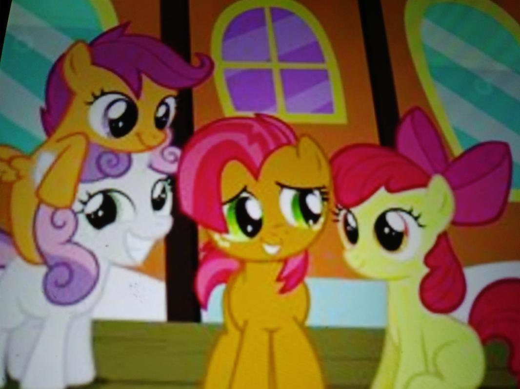 Apple bloom (right)