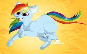 Rainbow dash cat form