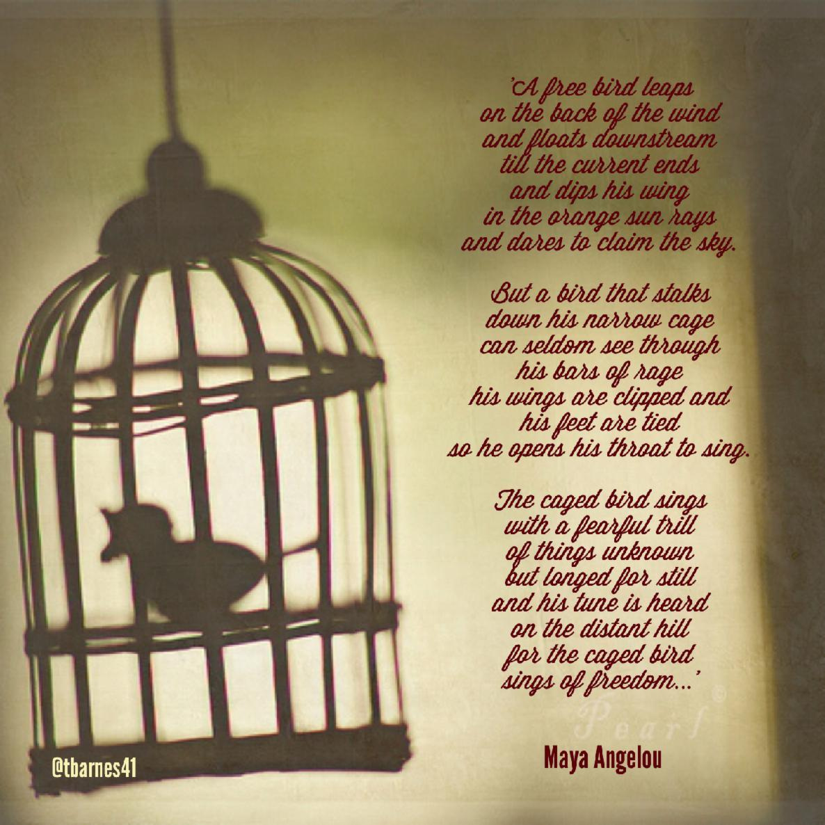 Caged bird-