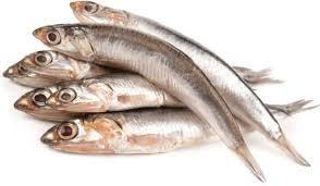 Anchovies, like bruh!