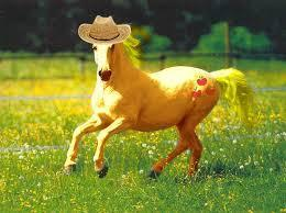 Applejack real horse