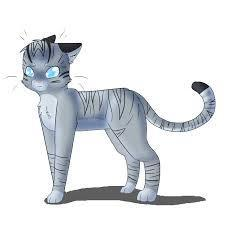 Jayfeather! he's soo adorable with his stick and he rocks! just cause he is blind doesn't mean he cant be awesome!
