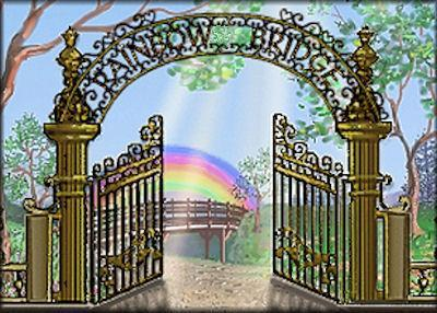 The Rainbow Bridge Poem - The beautiful journey of a pet after death.