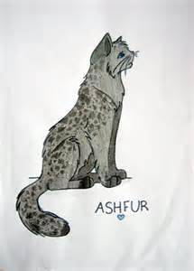how much do you know about ashfur?