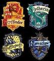 What Harry Potter House are you in? (2)