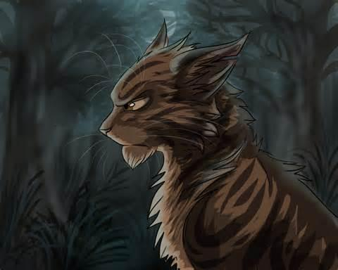 Guess that Warrior Cat!