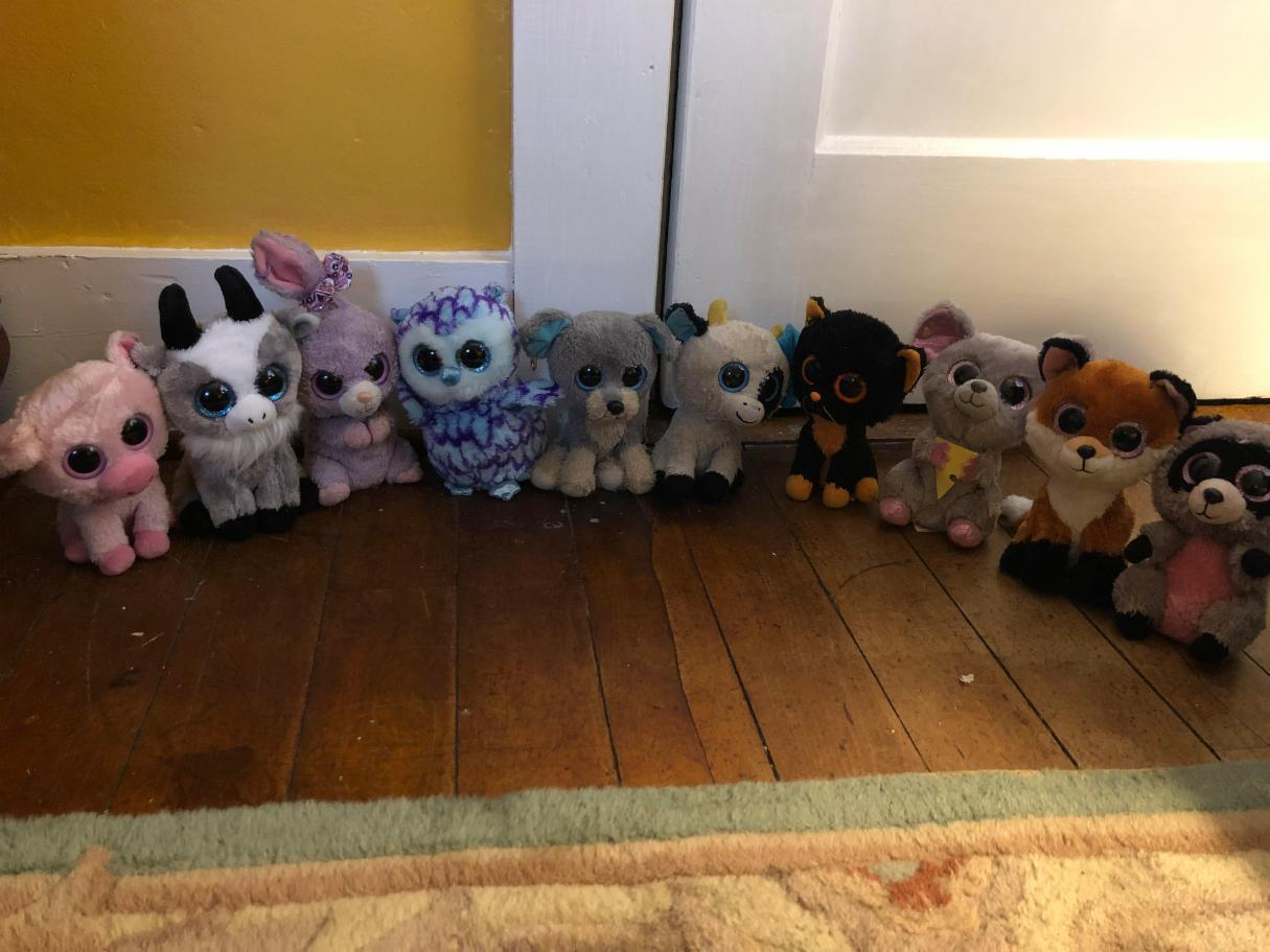 which beanie boo are you? (1)