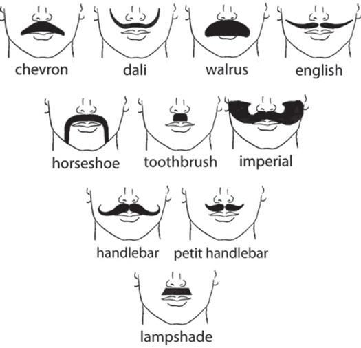 What type of mustache is your type?