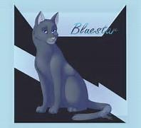 Warriors quiz, how well do you know Bluestar?