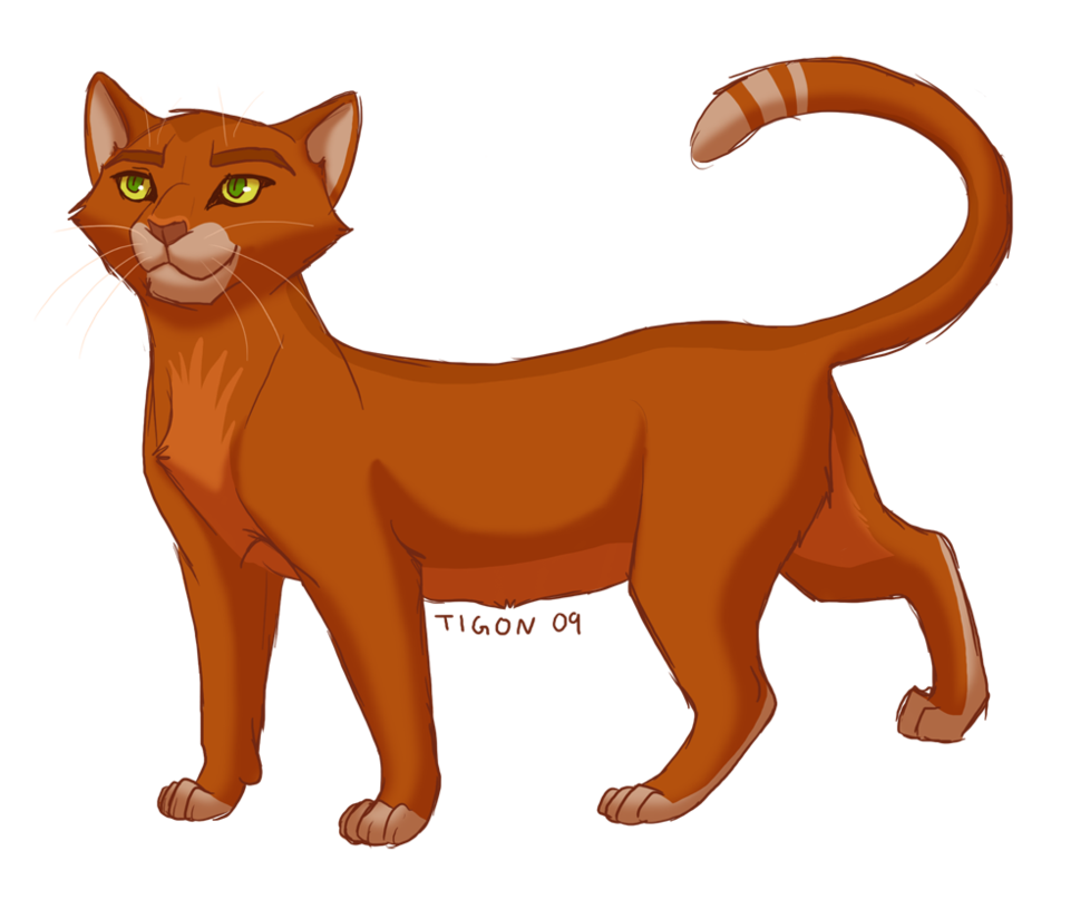 Which of My Warrior Cats Are YOU?