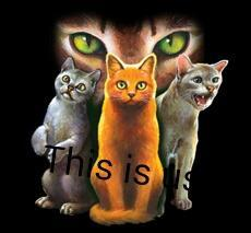 What Warrior Cats Clan Are You In? (3)