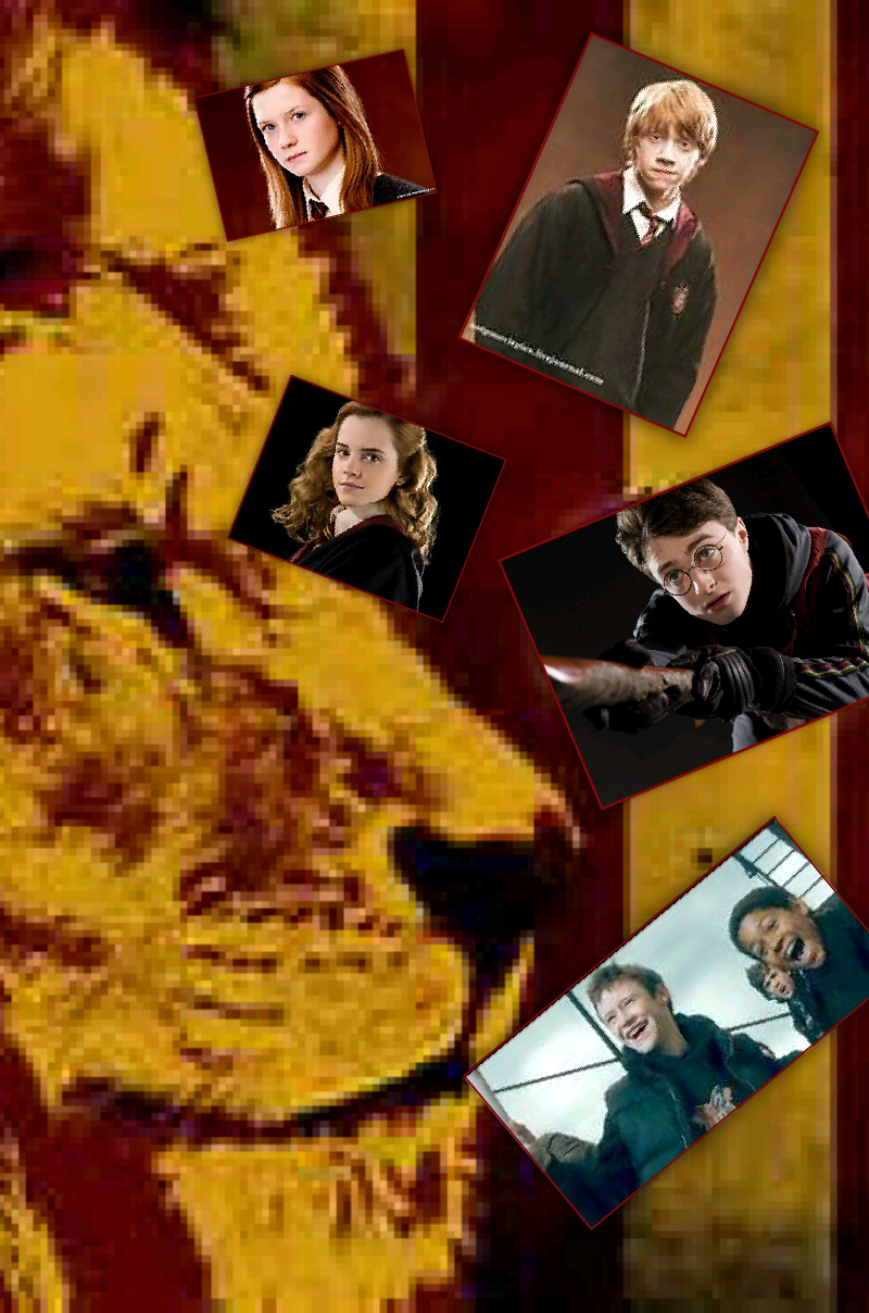 which Gryffindor are you?