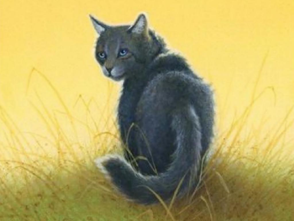 How well do you know Cinderpelt?