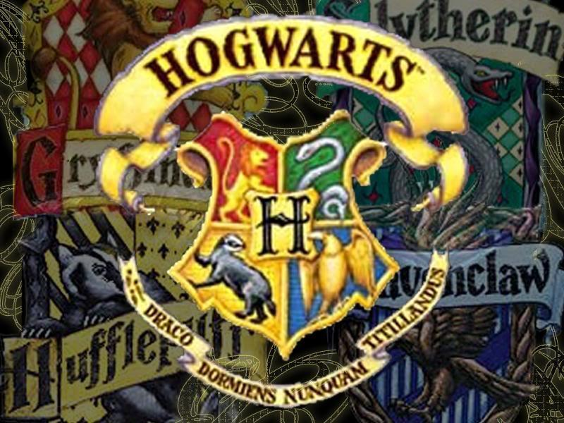 What Hogwarts house would YOU be in? (1)