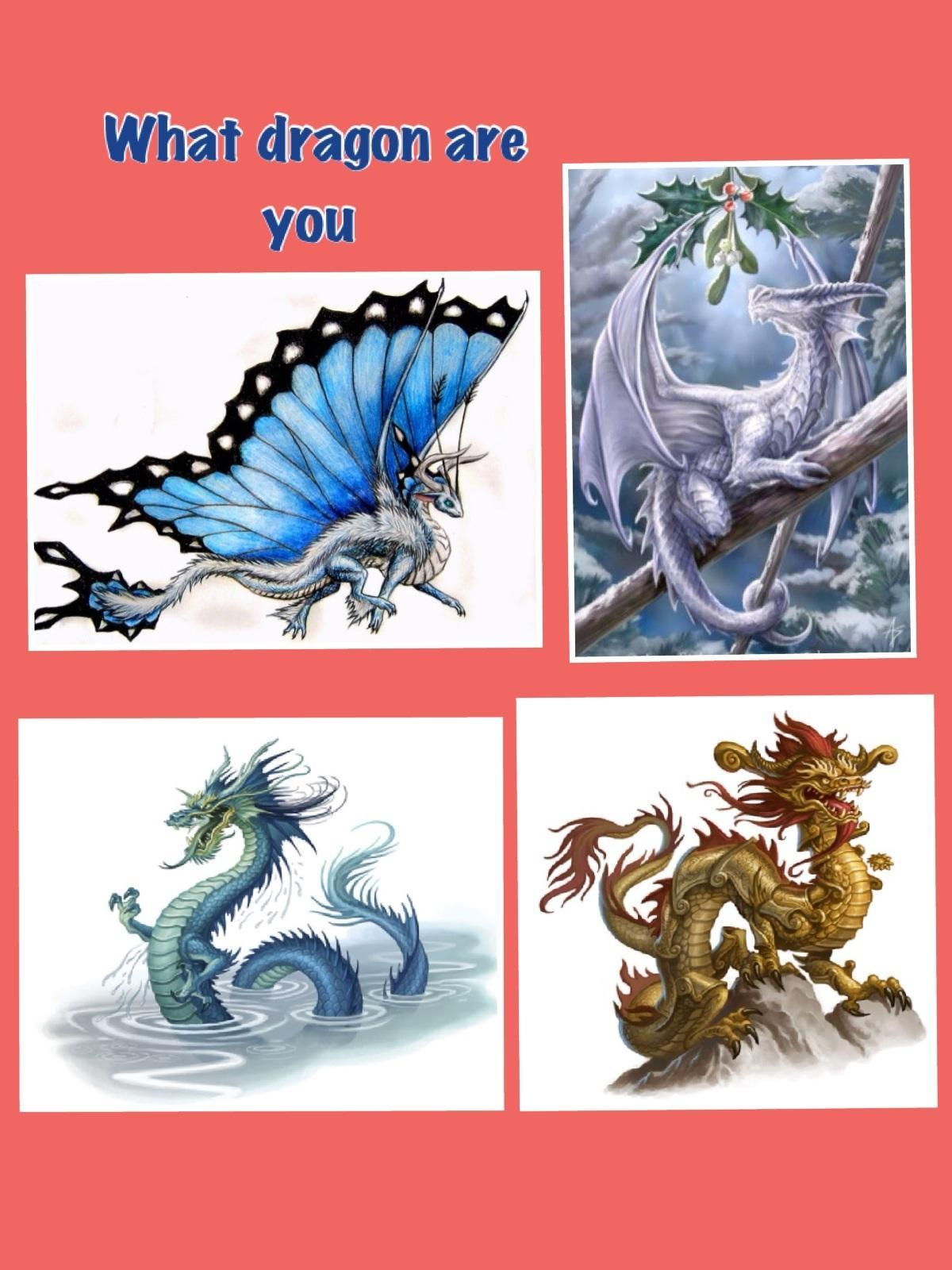 what dragon are you   1
