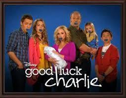 What good luck charlie character are you