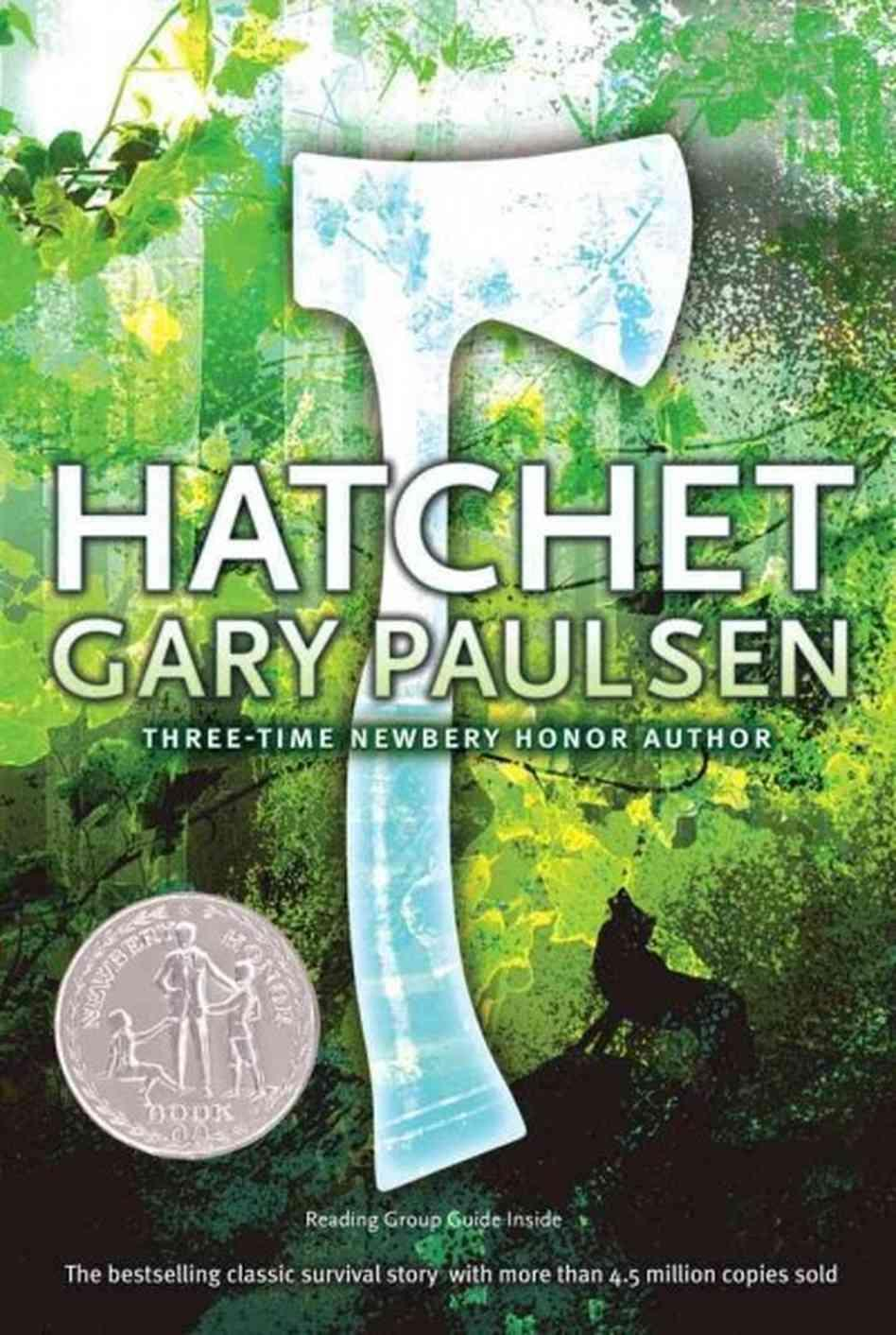 Hatchet Chapter 11