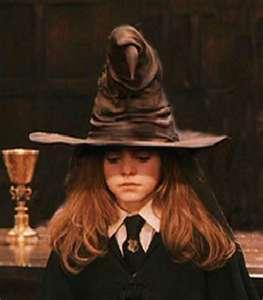 Harry Potter Sorting hat!