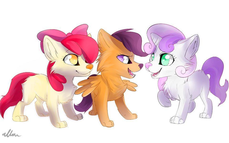 Are you a pegasister/brony?