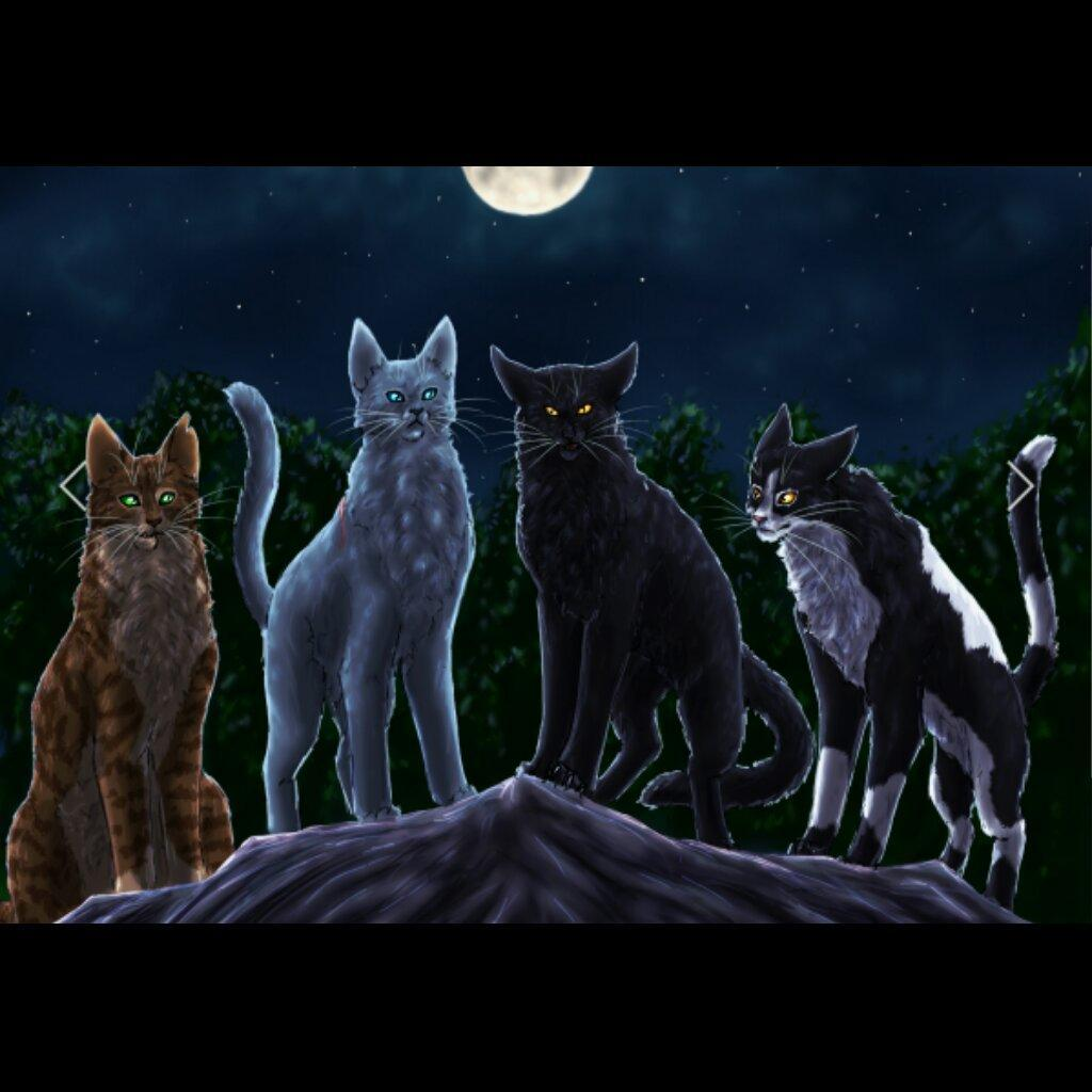 Warrior Cats What Clan Are You In? (1)