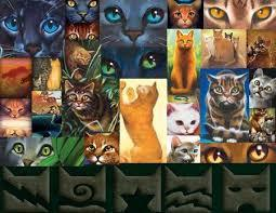 Are you a true warrior cats fan?