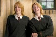 How much do you know about the Weasleys?