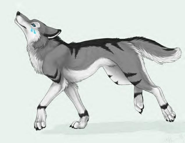 Would Silverstorm(my imaginary pet wolf) like you?