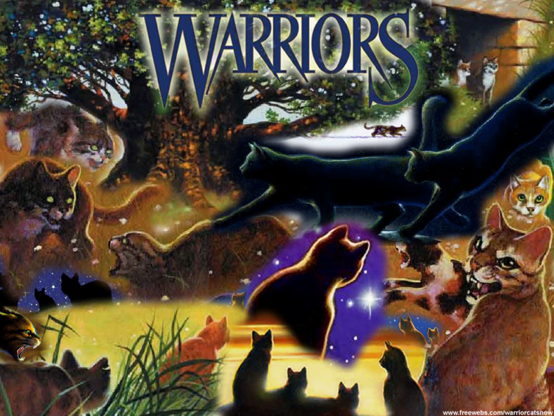 who is your warrior cat?