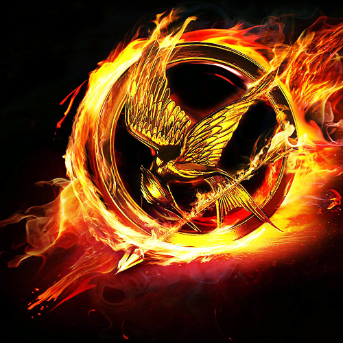How well do you know the Hunger Games? (8)