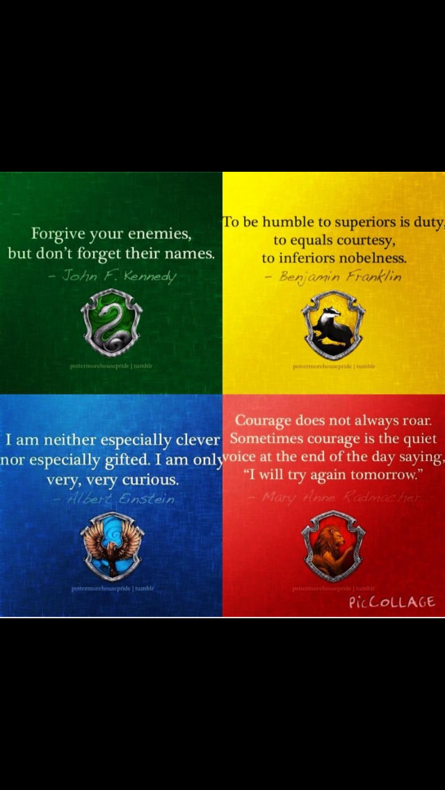 What is your Hogwarts House? (2)