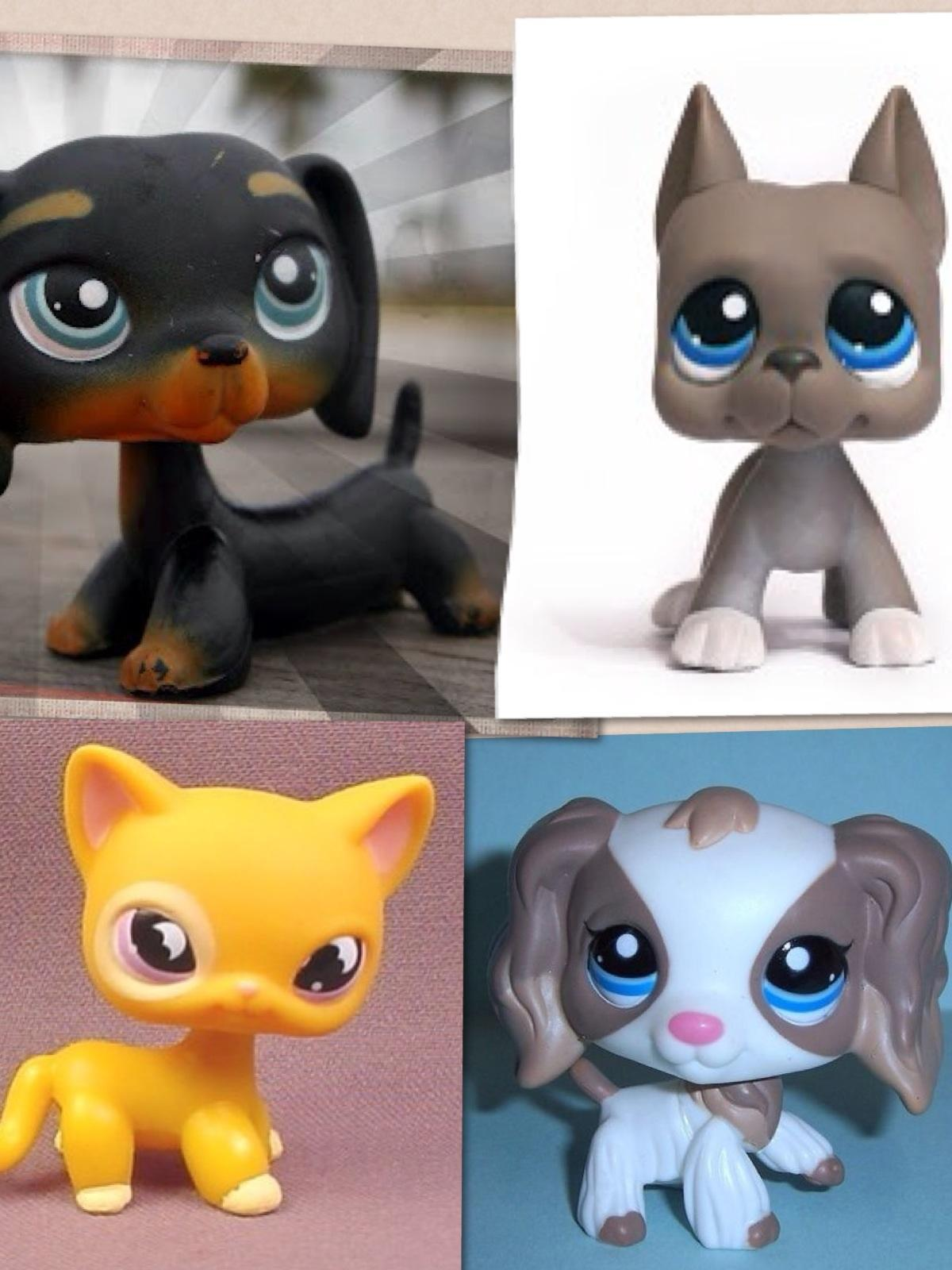 What lps are you (1)