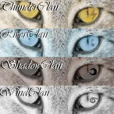 What Warrior Cats Clan Are You In? (1)