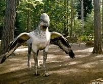 what color hippogriff are you?