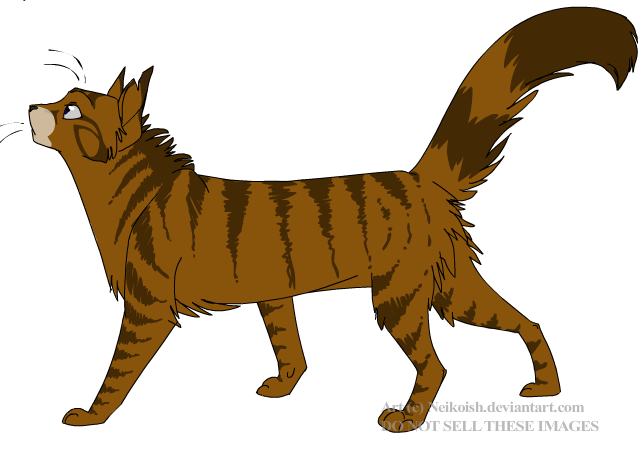 How Well Do You Know Warrior Cats Quiz