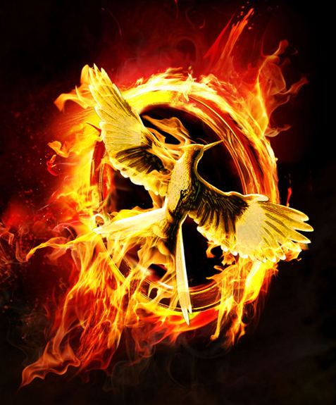 Hunger Games (THE ULTIMATE QUIZ) *Spoiler Alert!!!* (1)