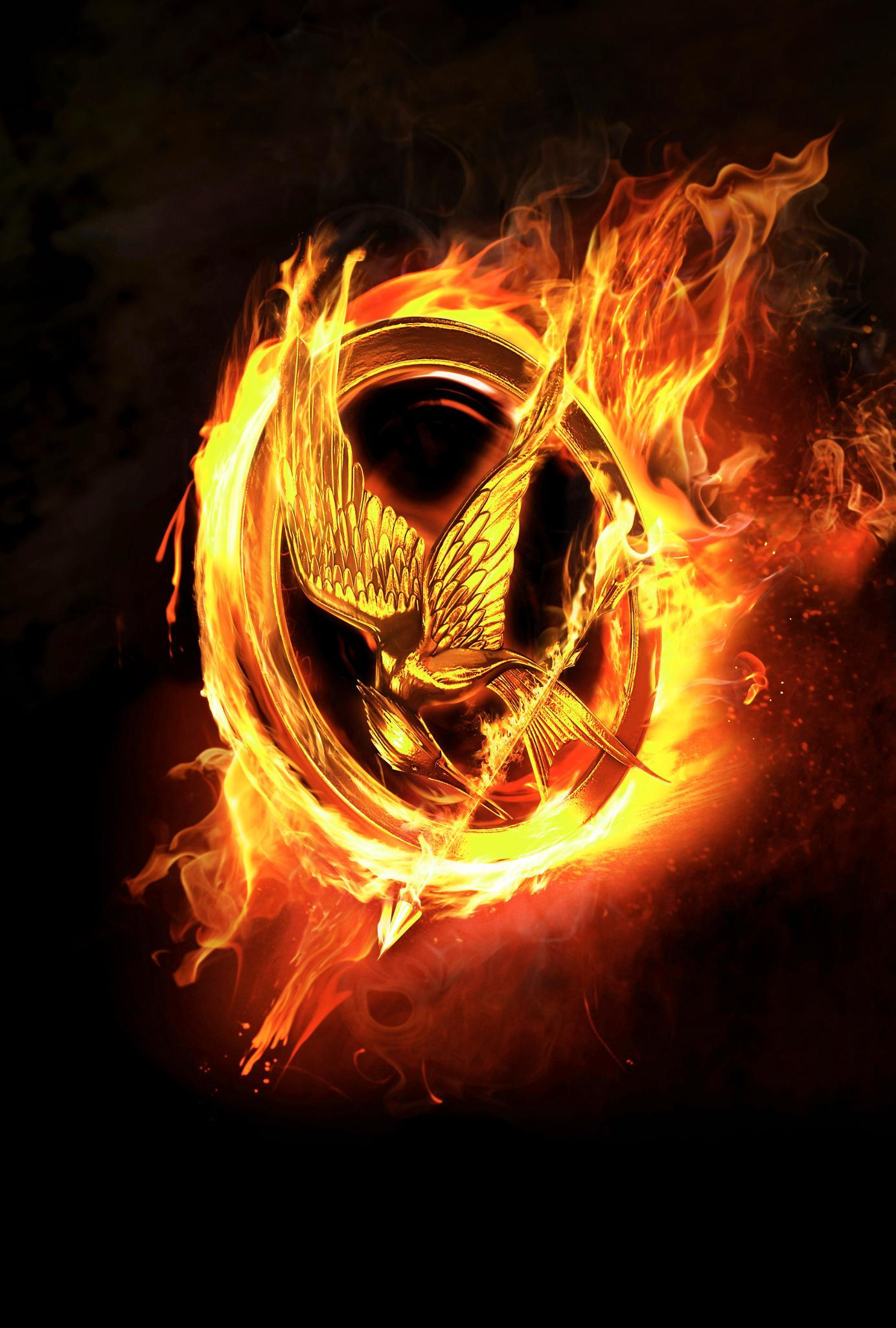 are you a true hunger games fan? (1)
