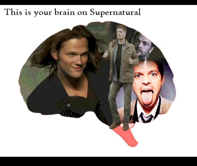 Does your brain love Supernatural?