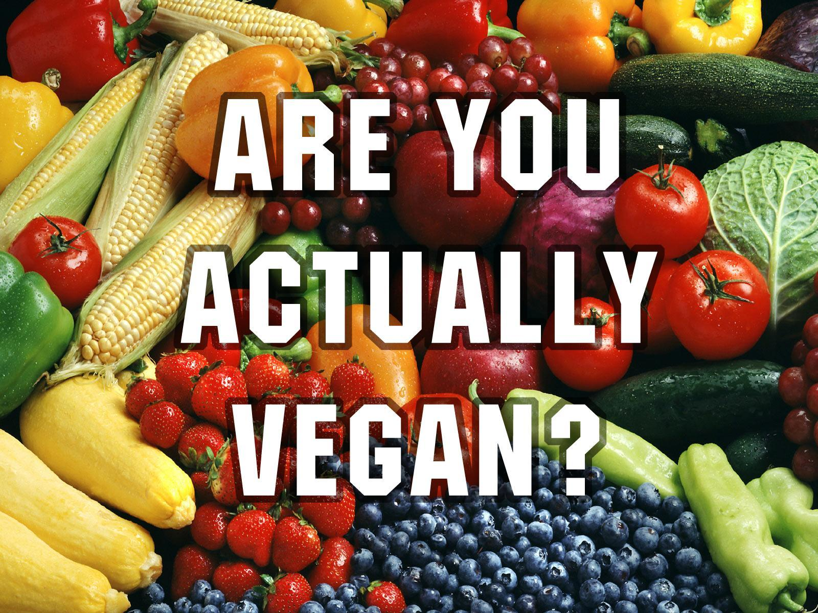 Are you actually vegan?