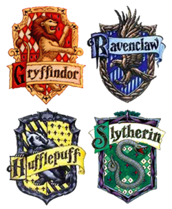 What Hogwarts house are you in? (2)