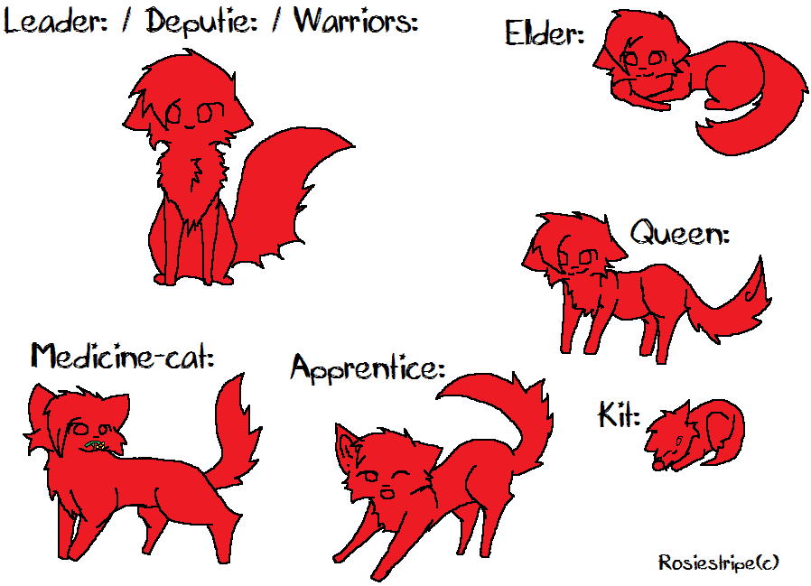 What warrior cat phase are you in? <three questions>