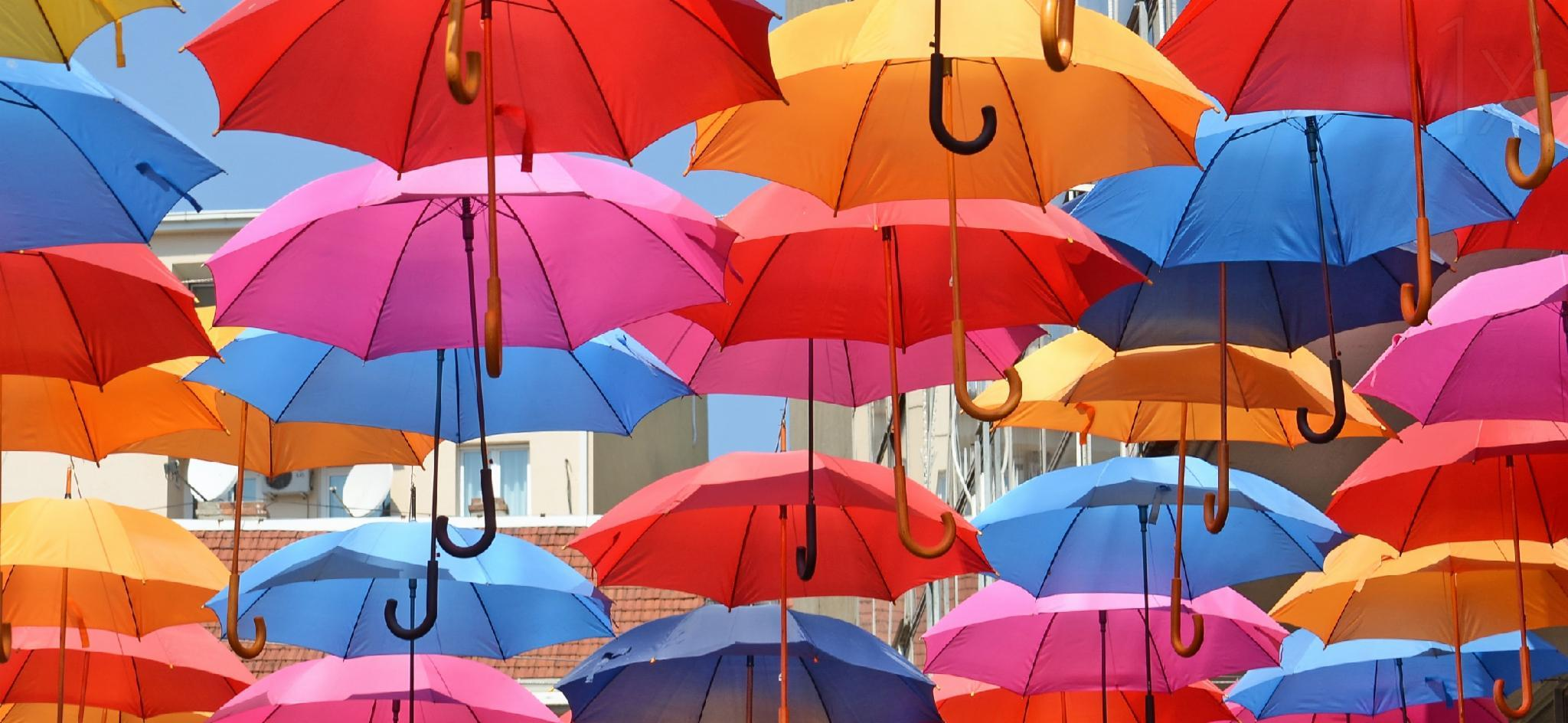 which umbrella are you?