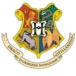 What Hogwarts House Are You? (2)