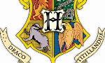 Which Hogwarts House do you Belong in? (2)