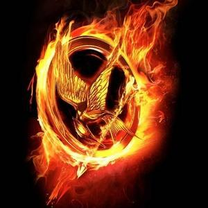 How well do you know The Hunger Games and Catching fire?