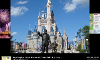 Walt Disney World Quiz